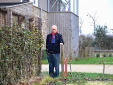 89 euro per m2 voor illegaal gebruikte gemeentegrond is redelijk in Roosendaal