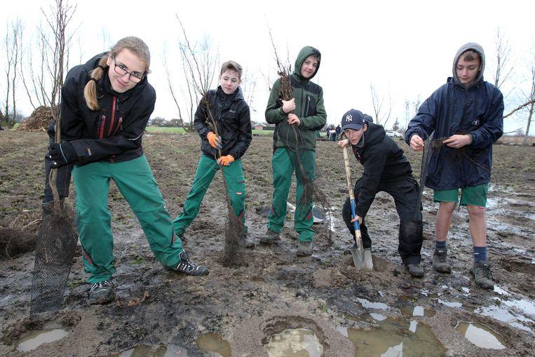 Leerlingen van Tuinbouwschool Melle kwamen planten in Rieme.