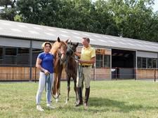 Manege de Paardenhoeve in Bergen op Zoom bestaat vijftig jaar