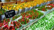 Nieuwe lifestylemarkt Bonne Bazaar pakt uit met 40 standhouders