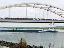 Zondag verkeershinder N286 door werk aan Thoolsebrug