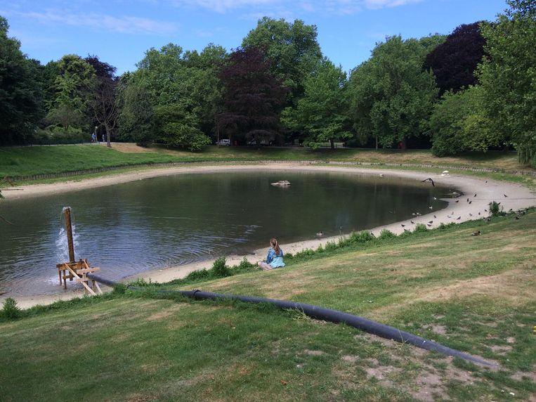 Vijver stadspark staat kurkdroog antwerpen regio hln for Vijver pompen