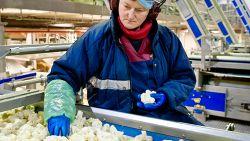 Terugroepactie besmette diepvriesgroenten dreigt Greenyard 30 miljoen te kosten