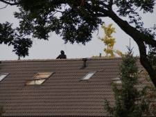 Verwarde man in Drunen door goede vriend en onderhandelaar politie van het dak gepraat