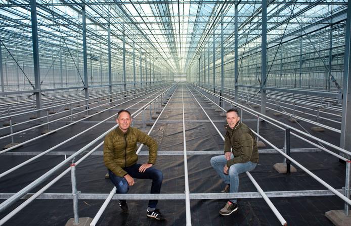 Richard (links) en Eduard ter Laak in de nieuwe daglichtkas in aanbouw langs de Wippolderlaan in Wateringen.