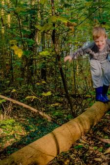 'Het is niet raadzaam om nu het bos in te gaan'