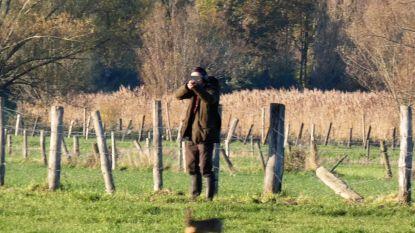"""""""Ik voelde de hagel op mijn kledij"""": wandelaar klaagt gevaarlijke jachtpartij in Langemeersen aan"""
