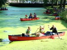 Nieuw kunstfestival voor kinderen in Wageningen