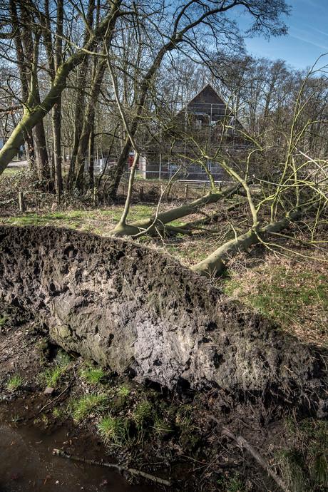 Na kaalslag groene toekomst voor 't Vaneker in Enschede