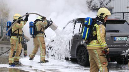Auto brandt volledig uit op oprit van garage