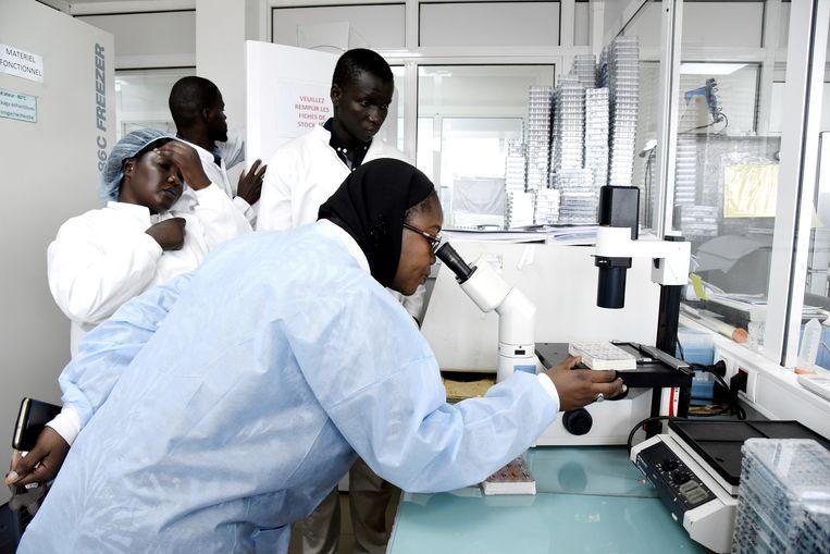 Onderzoekers in een laboratorium in Dakar, Senegal. Beeld AFP