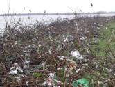 Na het hoge water ligt de Biesbosch nu bezaaid met plastic