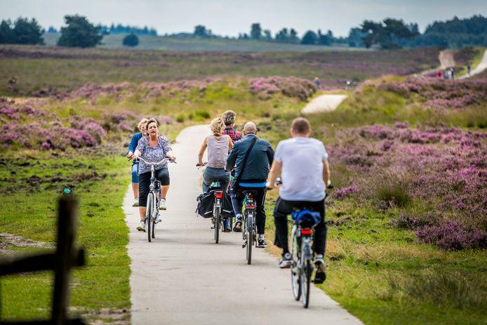 Nederland is een fietsland. Maar wordt Overijssel vanaf 1 januari een buitenbeentje bij het Landelijk Fietsplatform?