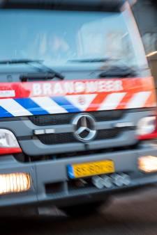 Onkruid verbranden gaat iets te fanatiek in Zwammerdam, brandweer rukt uit