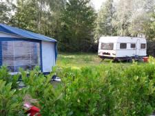 Gemeente laat 'gekraakte' woonwagenplaatsen in Heesch even met rust