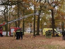Instructeur gewond na val uit de boom in Almelo