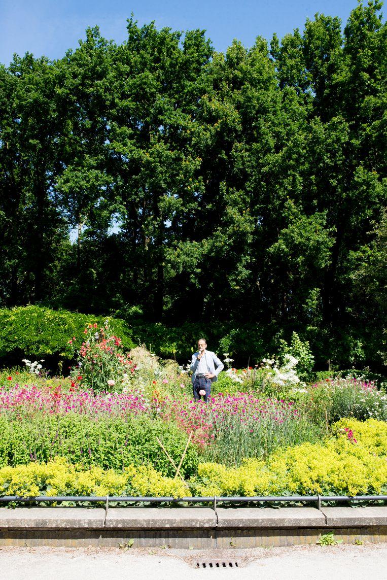 Elspeth Diederix' wondertuin in het Erasmuspark: 'Het is geen klassiek beeld, maar als je het kunt fotograferen is het een beeld, vind ik.' Beeld Marjolein van Damme