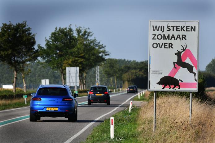 In Gelderland, Overijssel, Noord-Brabant en Noord-Holland telde Stichting Wildaanrijdingen Nederland dit jaar al gemiddeld 500 dodelijke wildaanrijdingen per maand.