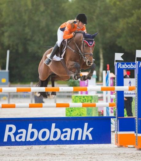 Paardendorp herrijst aan de Turnhoutsebaan in Goirle