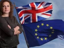 Onze vrouw in Londen: 'Dit is de belangrijkste fase in de brexit'