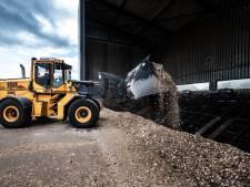 11,4 miljard euro aan subsidie voor vervuilende biomassacentrales 'weggegooid geld'