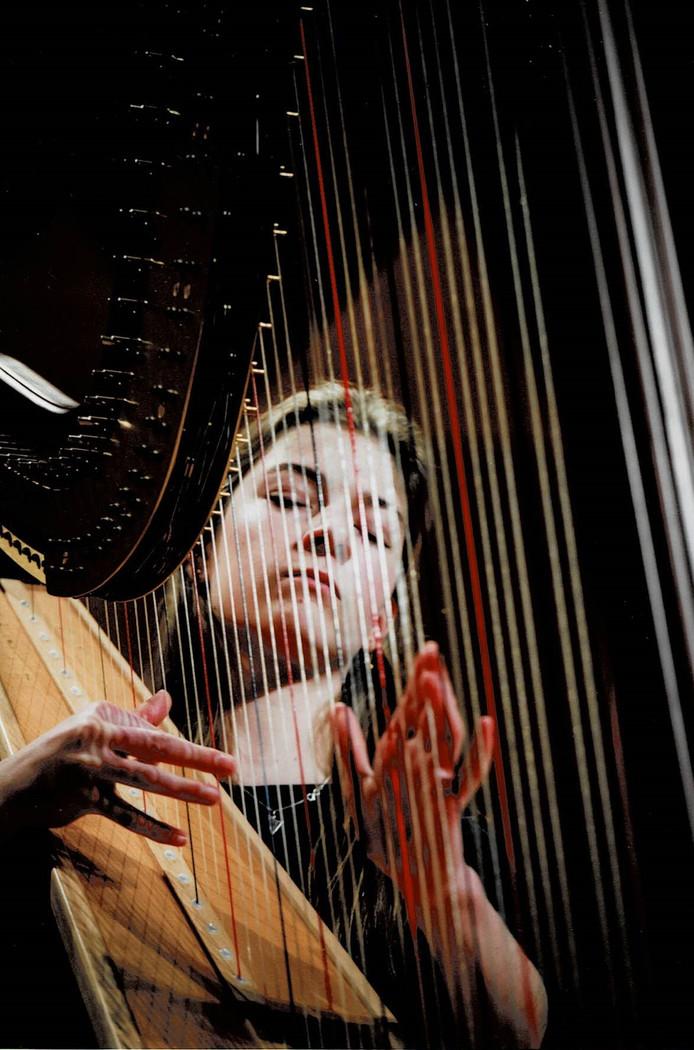 Merle van der Lijke, op harp.