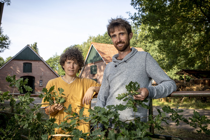 Jifke Haarsma en Bart Achterkamp hebben plannen voor een eikelboerderij. Eikelmeel is zeer geschikt om te verwerken tot iets lekkers.