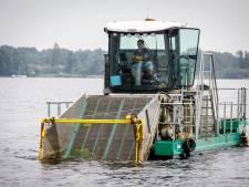 Onderwatermaaien in de Belterwijde: 'Weg met dat onkruid!'