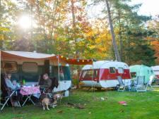Invasie van Zweedse caravans op camping De Jagerstee in Epe