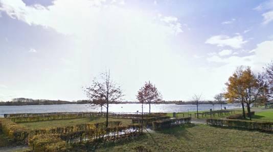De Rijkerswoerdse plassen