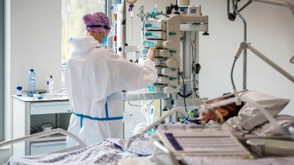 OVERZICHT. 499 nieuwe coronapatiënten opgenomen, 504 genezen verklaard
