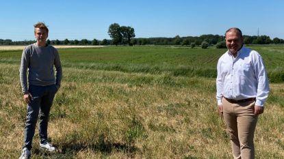 Geen woningen meer mogelijk aan Hoge Wal: Evergem schrapt 10 hectare woongebied