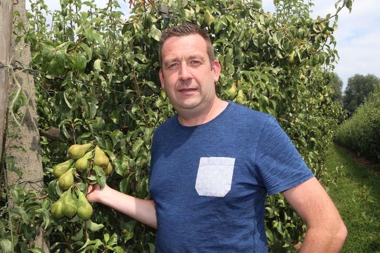 Voorzitter van sectorvakgroep fruit Luc Borgugnons.