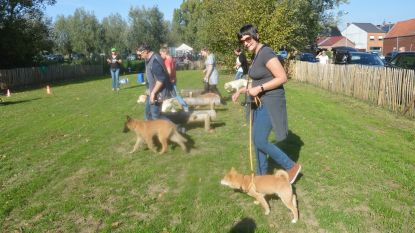 Hondenlosloopweide ingehuldigd met demonstratie hondenclub