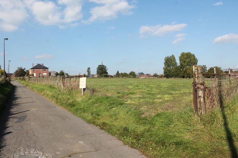 Op dit stukje groen langs de Veldstraat wil Novus Projects een nieuwe wijk bouwen.