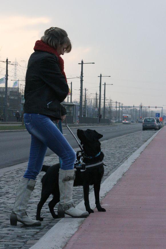 Baddy ging voor het ongeval graag wandelen met Jonna.