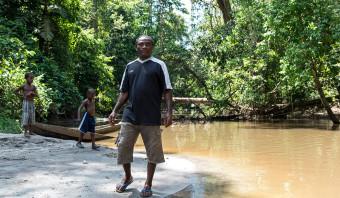 Surinaamse jungle wijkt voor oliepalmplantage