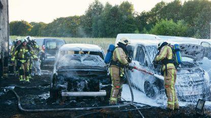 Vier wagens uitgebrand bij Delrue