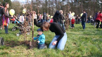 876 nieuwe bomen in geboortebos Puitvoet
