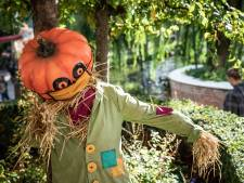 Toverland stopt met Halloween Nights na ophef