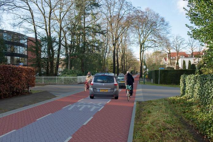 Zo komt de Jan Steenlaan eruit te zien, met een eigen plek voor fietsers waar de auto 'te gast' is.