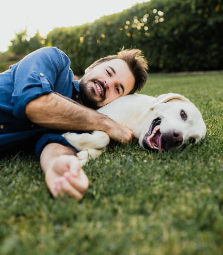 """Le """"dogfishing"""", la nouvelle technique de drague sur les applications de rencontre"""