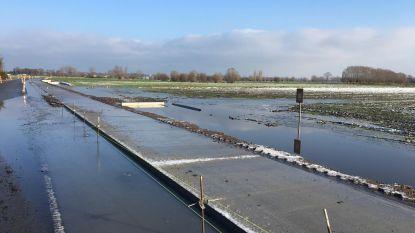 """Burgemeester Vermeire: """"Hoezo geen gevaar voor wateroverlast en geen open zicht?"""""""
