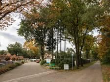 Misbruikverdachte (75) uit Lierop eerder veroordeeld voor ontucht