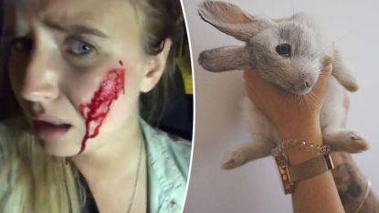 Activisten die vorige week 16 konijnen 'redden' uit kwekerij hebben er per ongeluk 100 dood in gejaagd