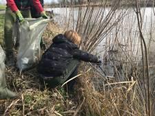 De Biesbosch bezaaid met plastic: in Geertruidenberg komen de inwoners zelf in actie