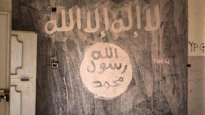 Deense jihadist moet zes jaar naar de cel en wordt dan het land uitgezet