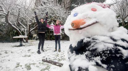 Sneeuw! Deze prachtige en leuke sneeuwbeelden zette u online