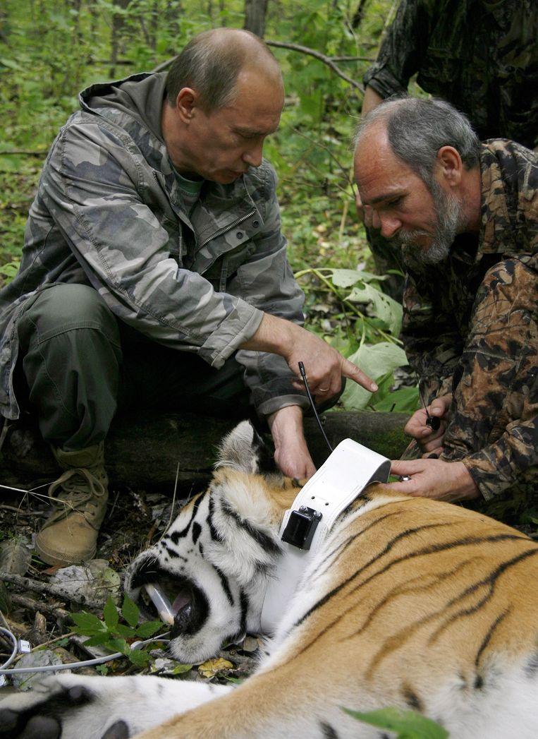 In 2008: Poetin met een tijger.