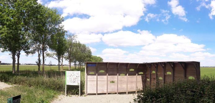 Essen langs de Vamerenweg in het veld tussen Wordragen en Kerkwijk. De essentaksterfte kost rond Hedel en Ammerzoden zo'n 400 essen de kop.